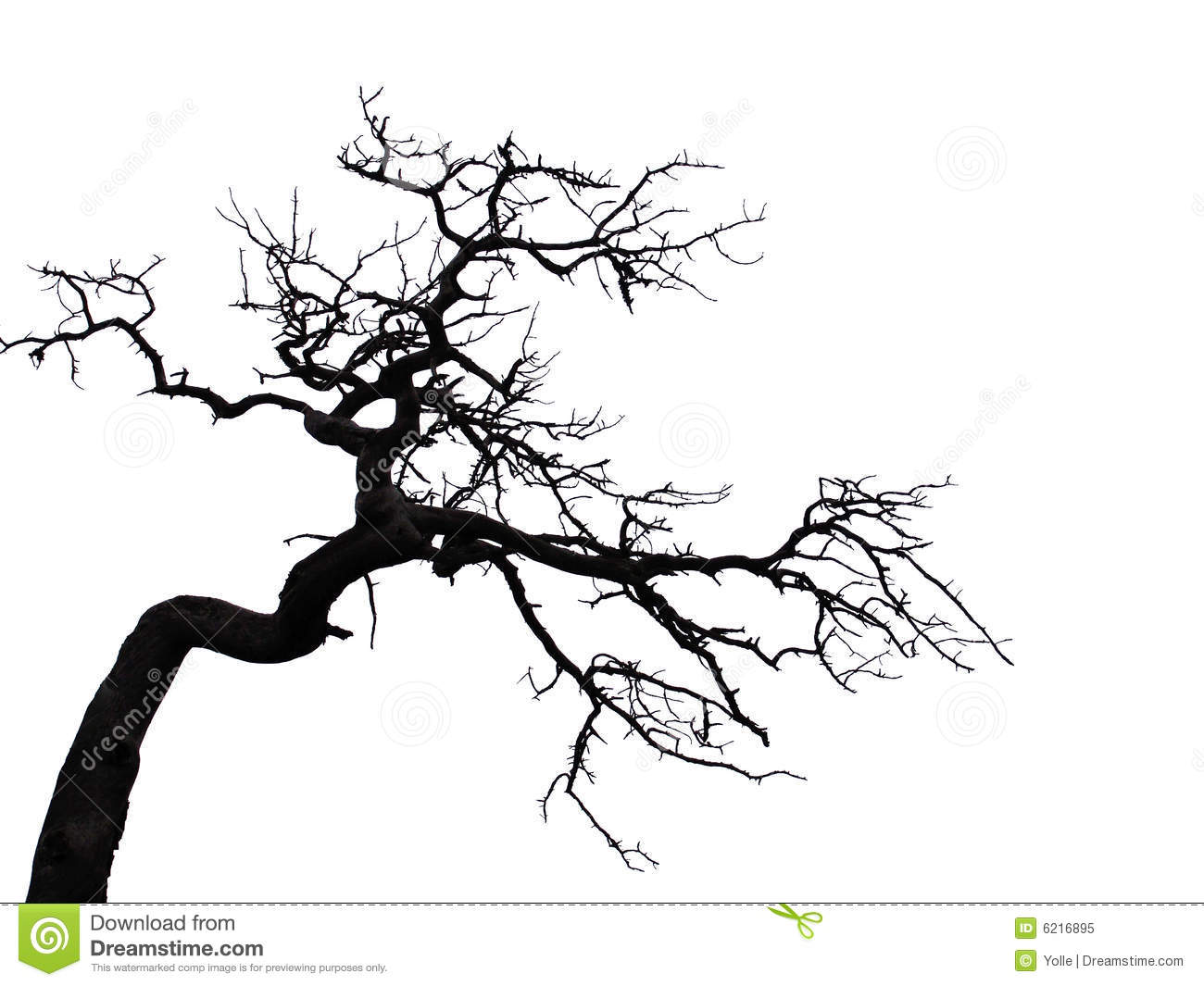 Scary tree clipart for Creepy trees for halloween